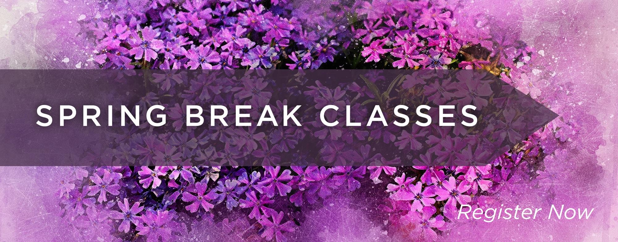 Spring Break Courses